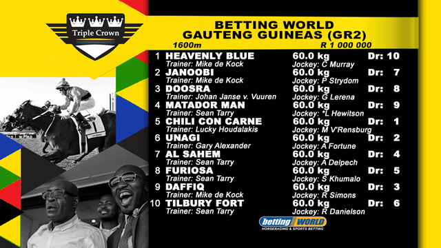 BW Gauteng Guineas Final Field