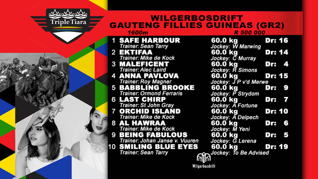 WBD Gauteng Fillies Guineas Final Field 1.jpeg